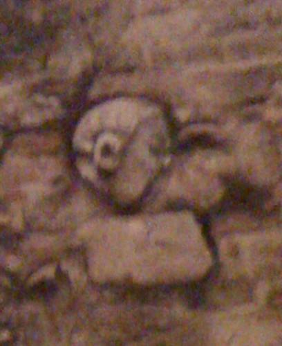 La misteriosa simpatica faccia che compare da un antico muro di Lanciano